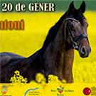 LXIII Festa de Sant Antoni Abat a Banyoles